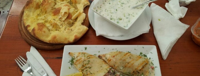 "Ресторант ""Златна Рибка"" is one of Tamer'in Beğendiği Mekanlar."