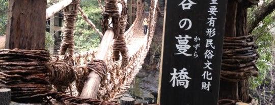 祖谷のかずら橋 is one of Tempat yang Disukai 西院.