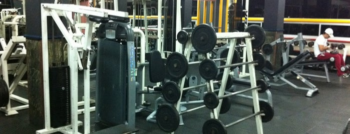 Bodybuilding Center GYM is one of Tempat yang Disukai Elena.