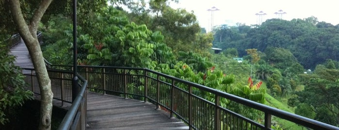 Canopy Walk is one of Trek Across Singapore.