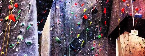 True North Climbing is one of Lieux qui ont plu à Ryan.