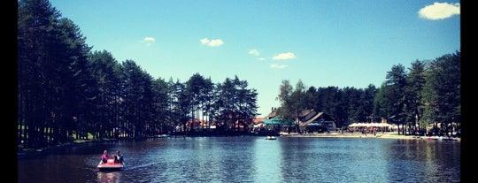 Zlatiborsko jezero is one of Lieux qui ont plu à Ivan.
