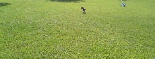 Miami Springs Dog Park is one of Locais salvos de Wendy.