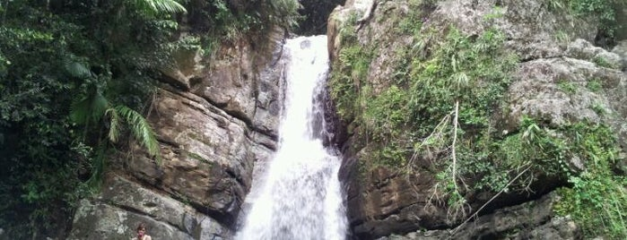 El Yunque National Forest is one of Puerto Rico.