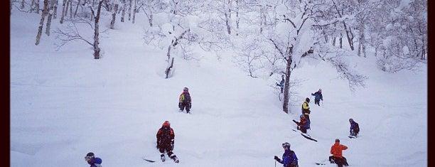 Niseko Annupuri International Ski Area is one of Lieux qui ont plu à まる.