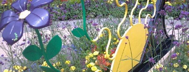 Green Bay Botanical Garden is one of Nicole 님이 좋아한 장소.