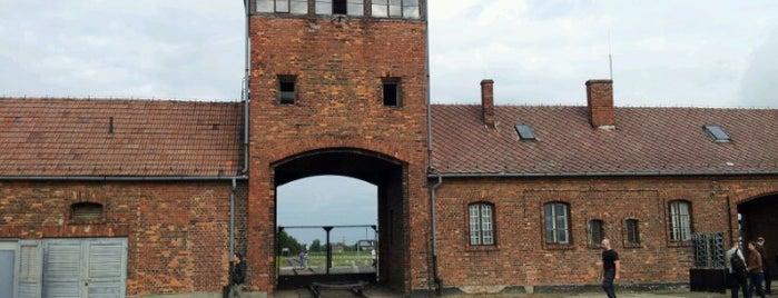 Мемориал и музей Аушвиц-Биркенау is one of Before the Earth swallows me....