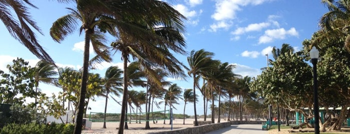 Lummus Park is one of Miami: history, culture, and outdoors.