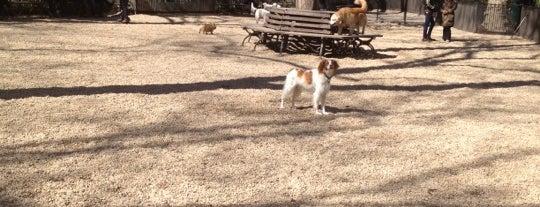 Jemmy's Dog Run is one of บันทึกเดินทาง New York.