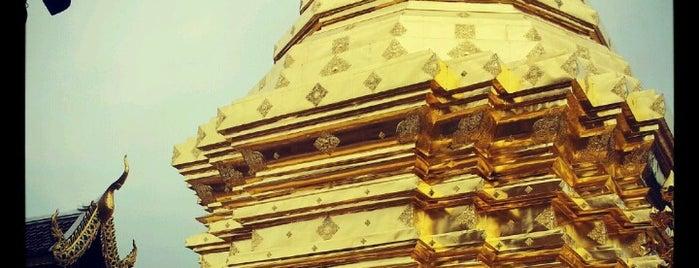 Wat Phrathat Doi Suthep is one of Thai Flowers.