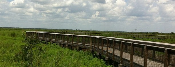 Paynes Prairie Preserve State Park is one of Florida.