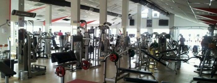 Fitness Park is one of Locais curtidos por MEHMET YUSUF.