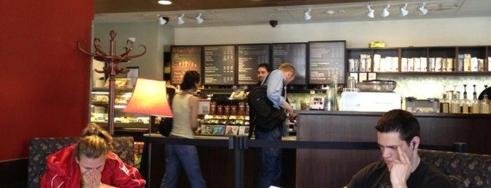 Starbucks is one of Alyssa's Ithaca visit.