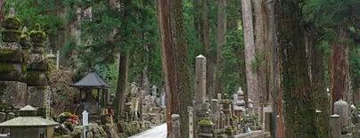 高野山 奥の院 参道 is one of World heritage - KOYASAN.
