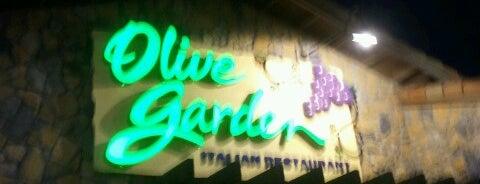 Olive Garden is one of Locais curtidos por Tania.