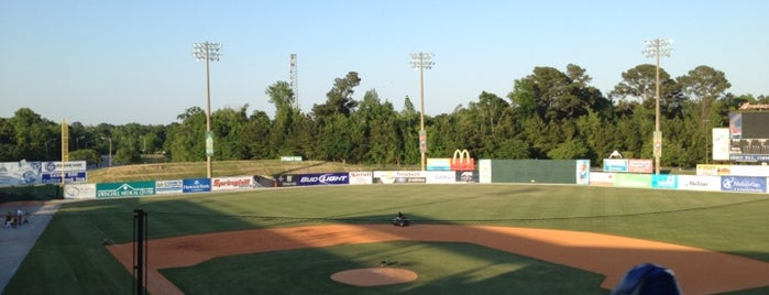 Hank Aaron Stadium is one of Posti salvati di Damon.