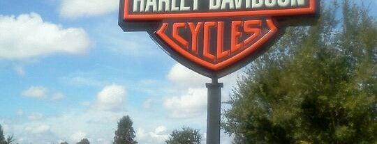 Orlando Harley-Davidson is one of Lugares favoritos de Mauricio.