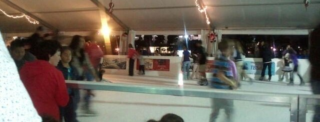Tampa's Downtown on Ice is one of Best of South Tampa Outdoors.