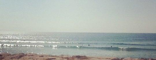 Praia Nova is one of Posti che sono piaciuti a Claudia.