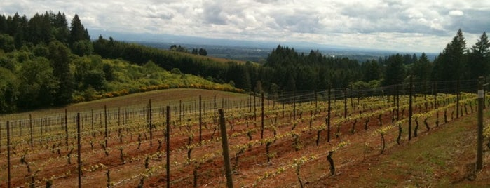 Lange Winery is one of Dundee Hills AVA Wineries.