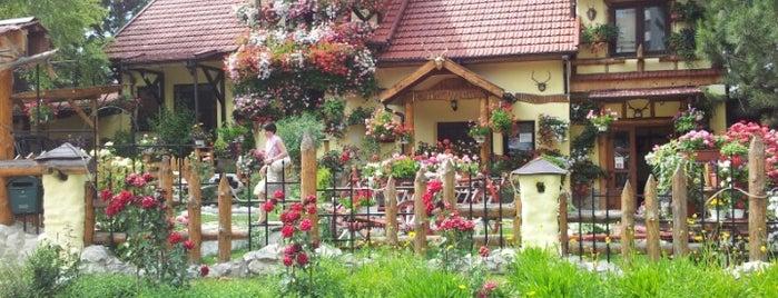Roata Vremii is one of Restaurante în Chișinău (partea 1).