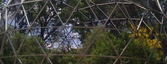 Parque Agua Azul is one of Guadalajara, MX.