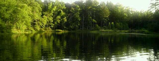 Tyler State Park is one of camping 2013.