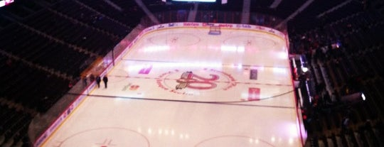 Canadian Tire Centre is one of NHL (National Hockey League) Arenas.