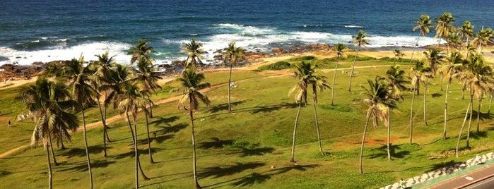 Praia Jardim de Alah is one of praia.