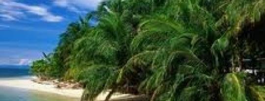 Isla Zapatilla is one of Bocas del Toro.