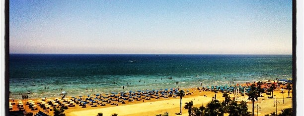 Finikoudes Beach is one of Sunny Cyprus.