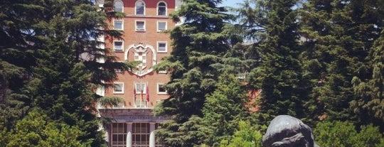 Universidad Complutense de Madrid is one of madrid.
