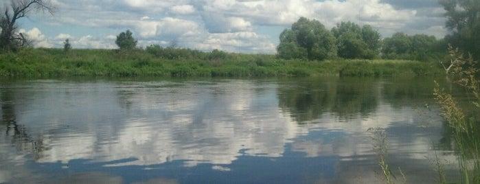 Берег реки Москвы is one of Lugares favoritos de Ekaterina.