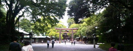 Meiji Jingu Shrine is one of Tokyo as a local.