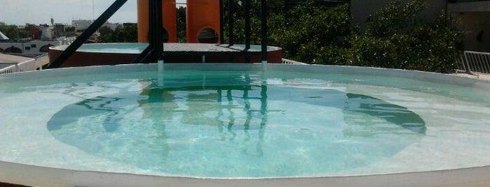 Hotel Basico is one of Guía de barrio, Playa del Carmen.