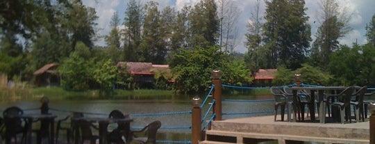 Magic Lagoon is one of Bogs 님이 좋아한 장소.