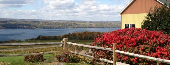 Atwater Estate Vineyards is one of Finger Lakes Wine Trail & Some.