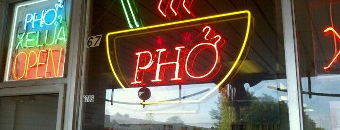 Essential Pho Restaurants Around D.C.