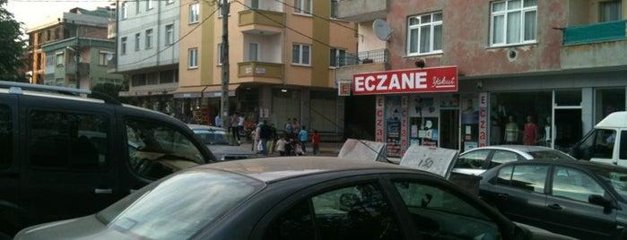 Esenler is one of Pendik.