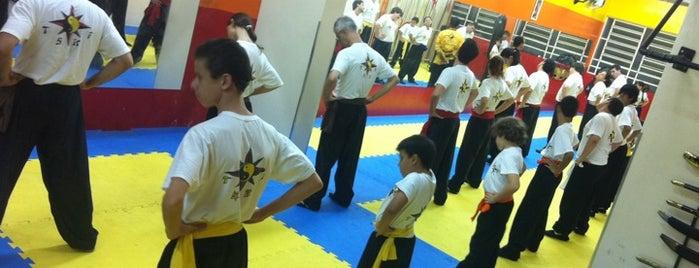 TSKF Academia de Kung Fu Ipiranga is one of Maita List.