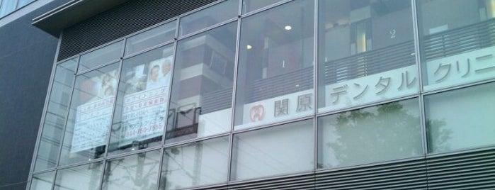 関原歯科クリニック is one of 武蔵小杉再開発地区.