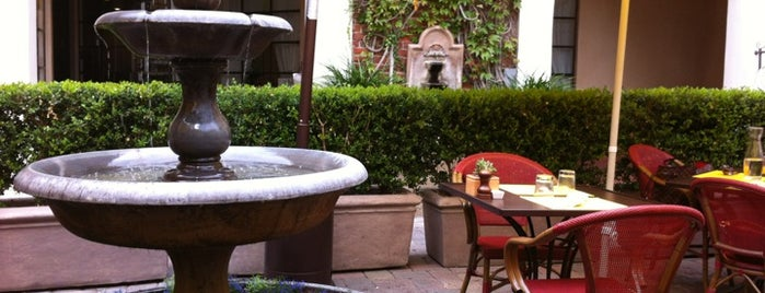 Scarlett Begonia Is One Of The 15 Best Dog Friendly Places In Santa Barbara