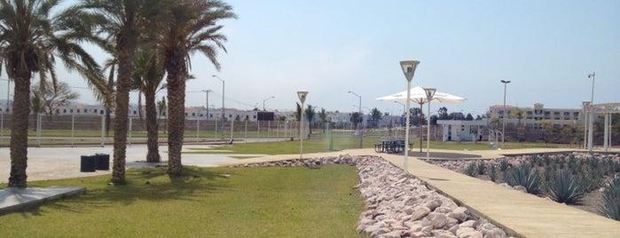 Tec Milenio Campus Mazatlan is one of Tempat yang Disukai c.