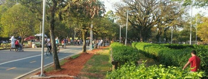Parque Ibirapuera is one of Bares/Cafés, Restaurantes, Baladas São Paulo e ABC.