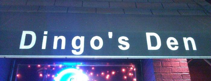 Dingo's Den is one of Rock Venues & Bars (NYC/NJ).