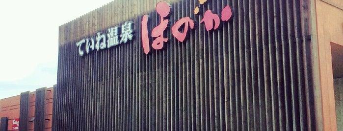 ていね温泉 ほのか is one of สถานที่ที่ Yasufumi ถูกใจ.