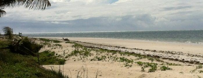 Nyali Beach is one of KENYA.