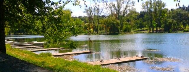 Parcul Tineretului is one of Posti che sono piaciuti a Carl.