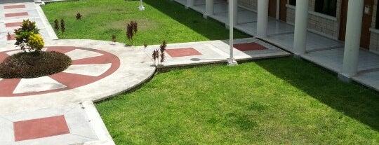Universidad de Quintana Roo is one of Tempat yang Disukai DNNY.