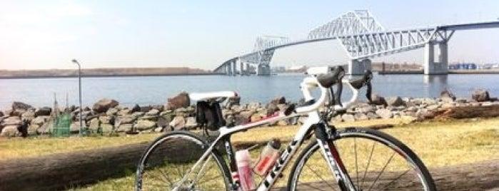 サイクリング大好き♥
